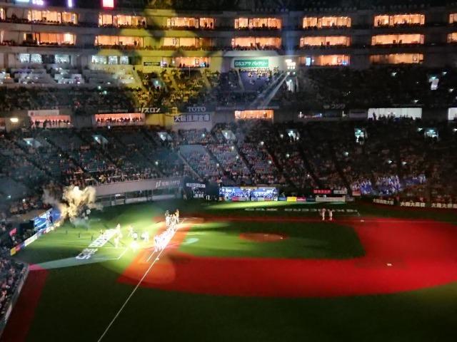 マリィと野球観戦-1