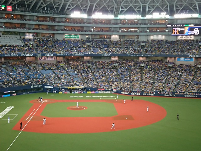 マリィと野球観戦-2