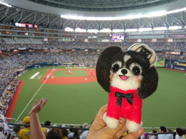 マリィと野球観戦-4