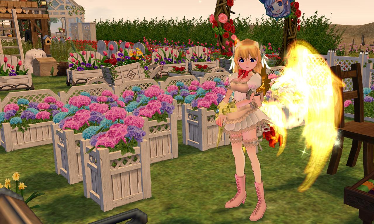 紫陽花の花2