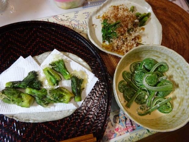 山菜@頂き物 (1)
