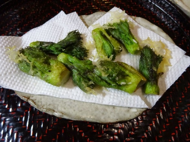 山菜@頂き物 (2)