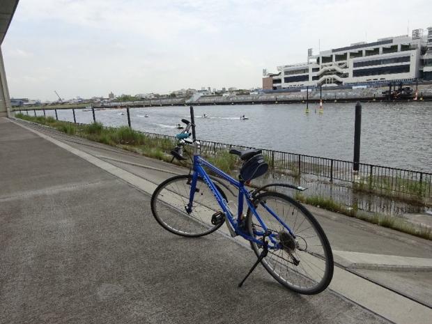 サイクリング5-29 (4)