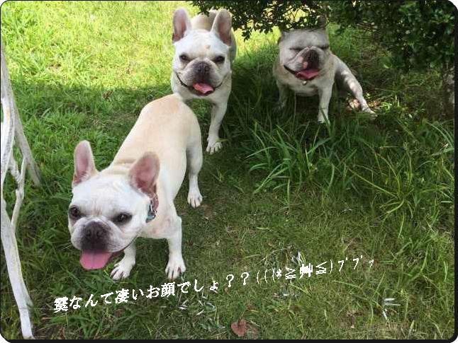 霙Great!顔