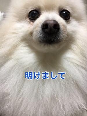 fc2blog_2019010718023014e.jpg