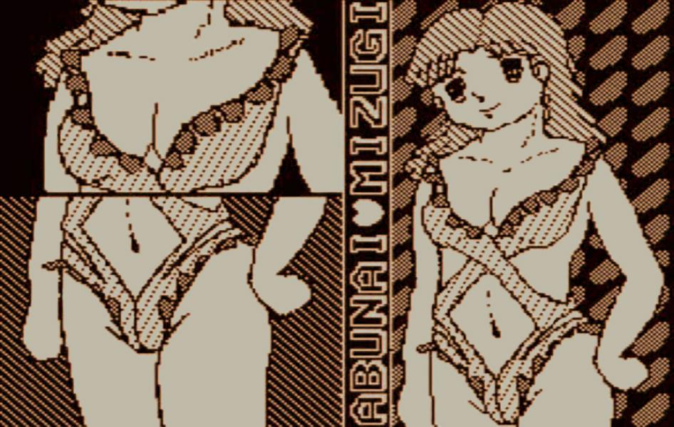 Dragon_Quest2_MSX_Princess_Sexy_Swimsuit.jpg