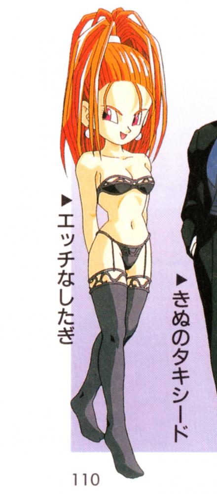 SFC版ドラクエ6(スーパーファミコン版ドラゴンクエストVI)公式ガイドブック下巻イラスト バーバラの下着姿エッチなしたぎ1
