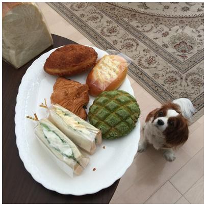 ゆたかパン1