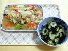 CAI_180625_5187 八宝菜・胡瓜とワカメの酢の物_VGA