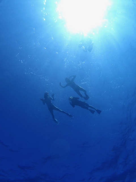 snorkel - 1 (7)