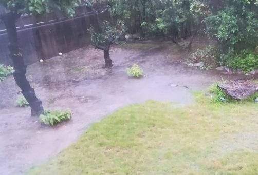 3 翌朝・雨で庭は水たまり