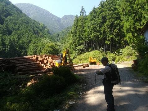 3 登山口の材木集積場