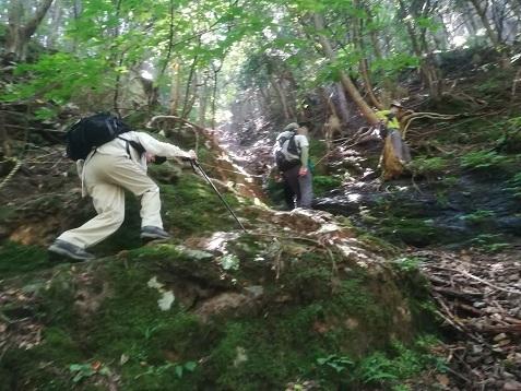8 琵琶の滝直前の急な斜面
