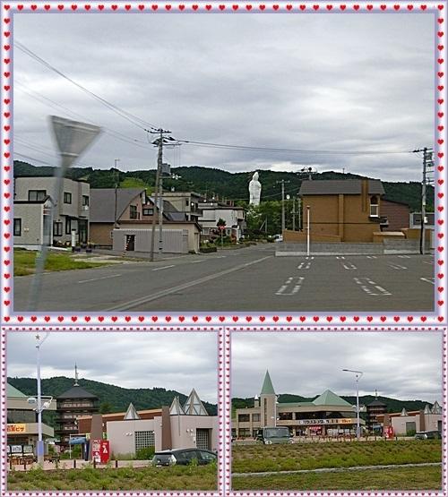 CIMG1143-vert.jpg