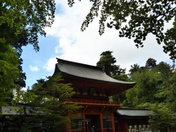 katori3_c.jpg