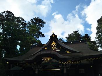 katori4_c.jpg
