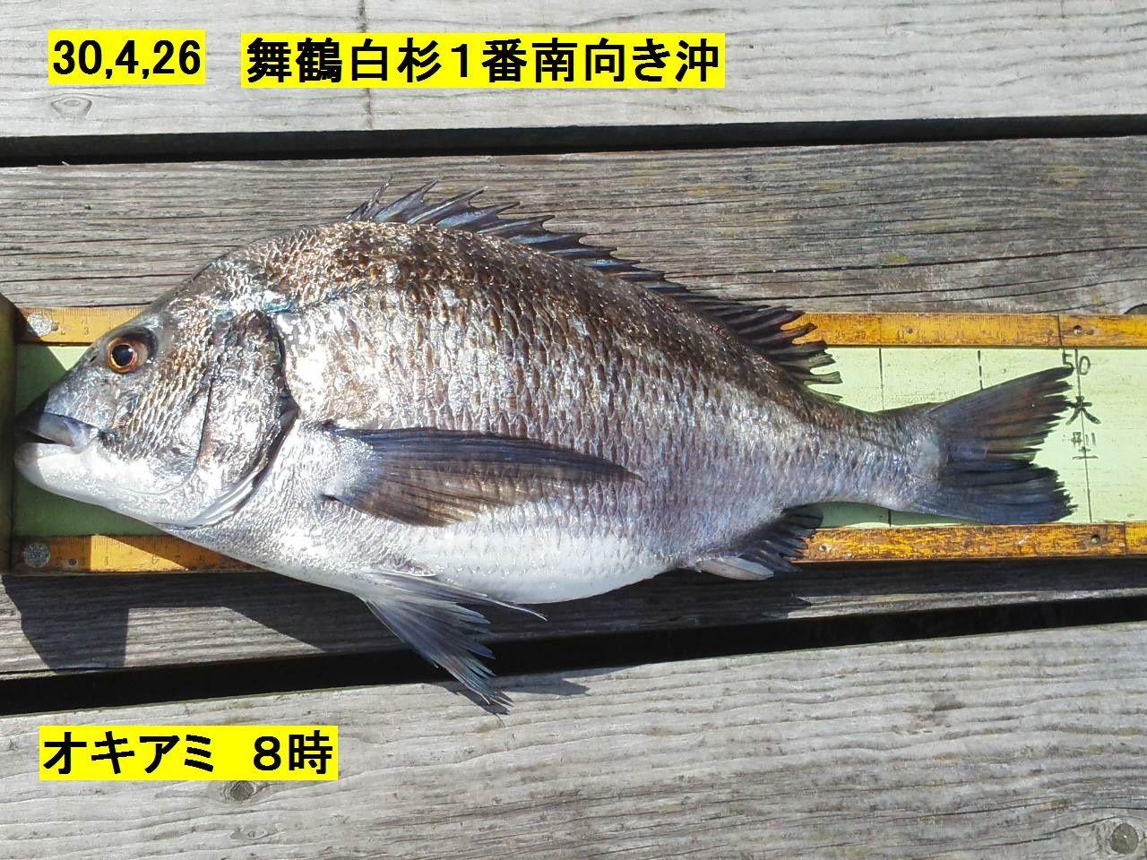 釣果300426