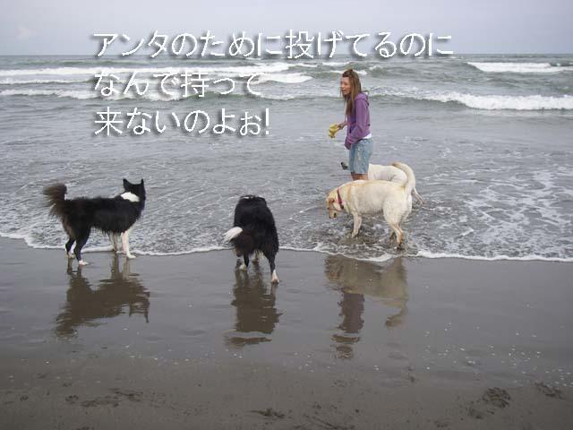 5人娘 海へ行く 6