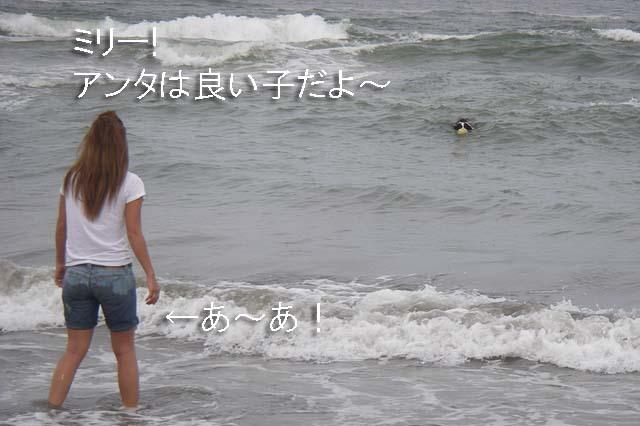 5人娘 海へ行く 10