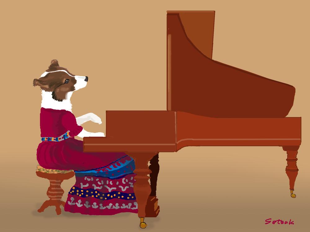 ピアノを弾くプレイエル