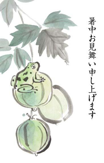 蛙暑中見舞い
