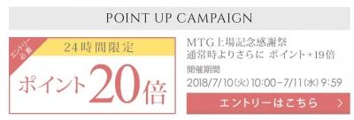 MTG1.jpg