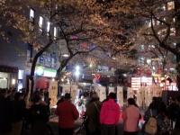 櫻坂@渋谷・20180406・桜まつり