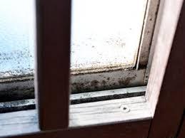 結露を放っておくと発生する窓廻りのカビ