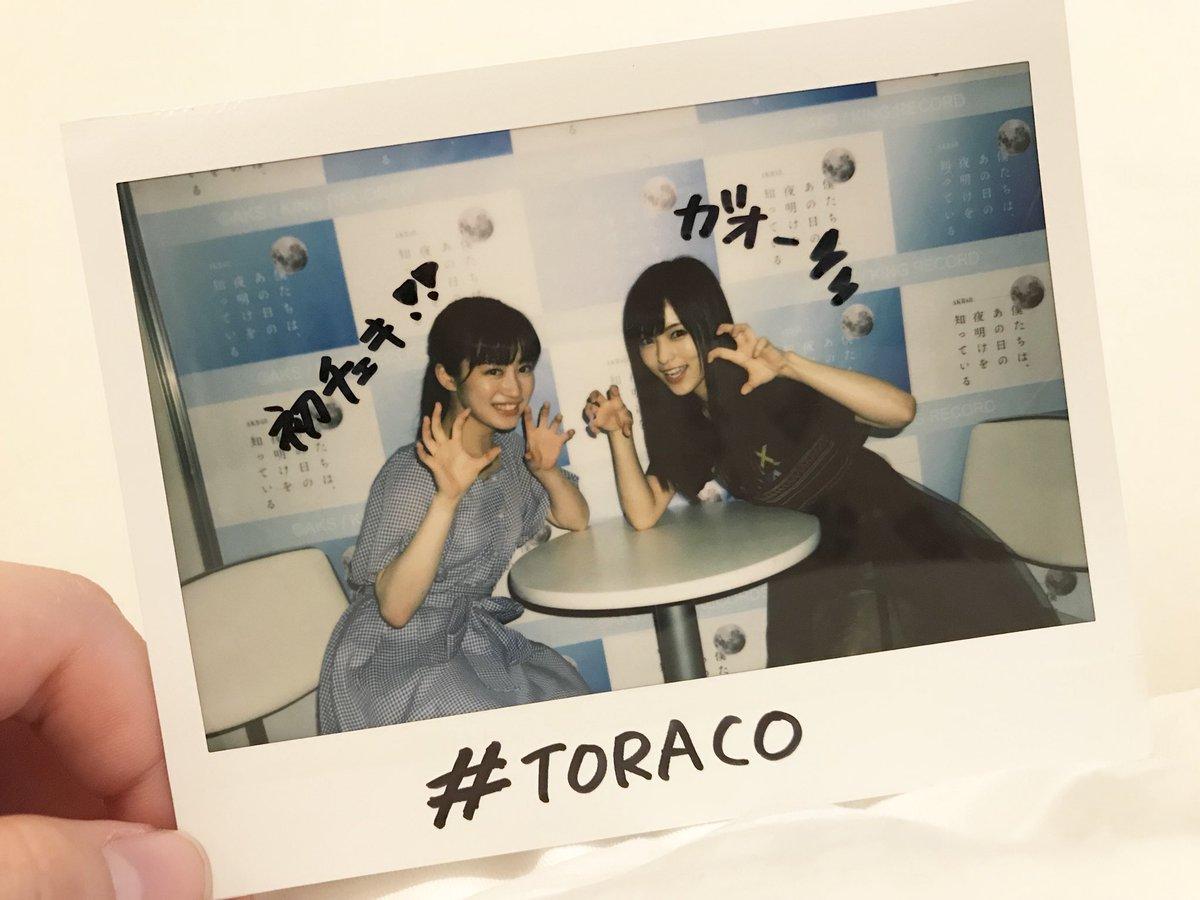 chihisayaakogare1.jpg