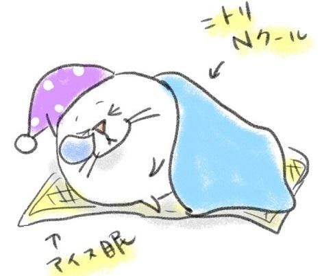 夏の寝具3