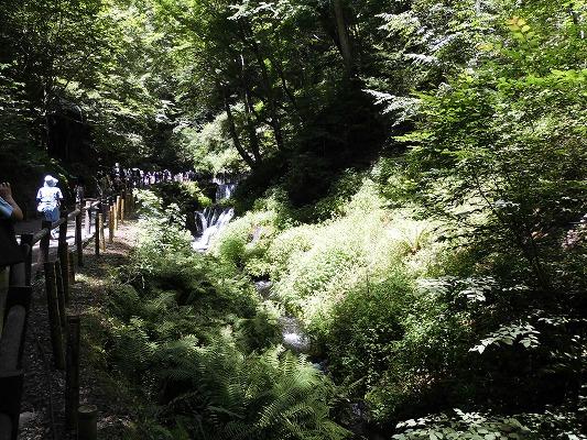 0180722滝途中2
