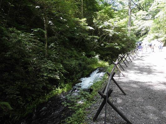 0180723滝入り口1