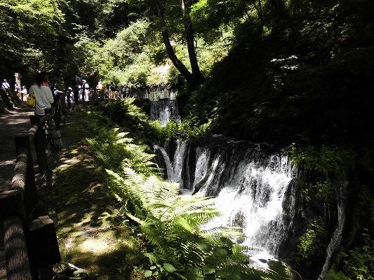 0180722滝近い3