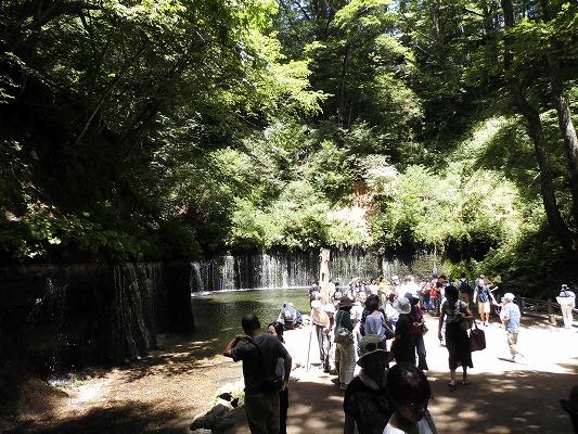 0180722白糸の滝遠景