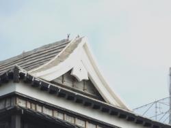 20180430熊本城33