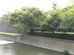 20180430熊本城50