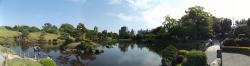 20180430水前寺公園3