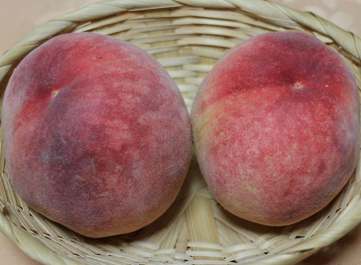 今 食べ頃の桃です 30 6 28