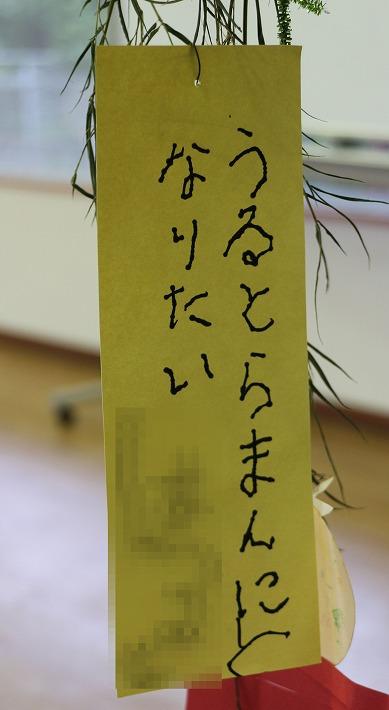 七夕短冊 30 7 8