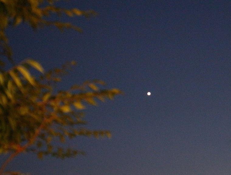 明るい大きな星が西南方に 30 8 5