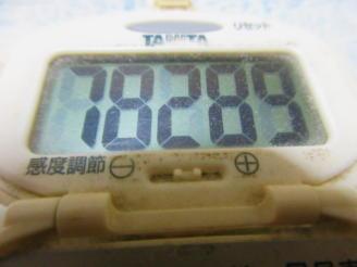 229歩数計(1)