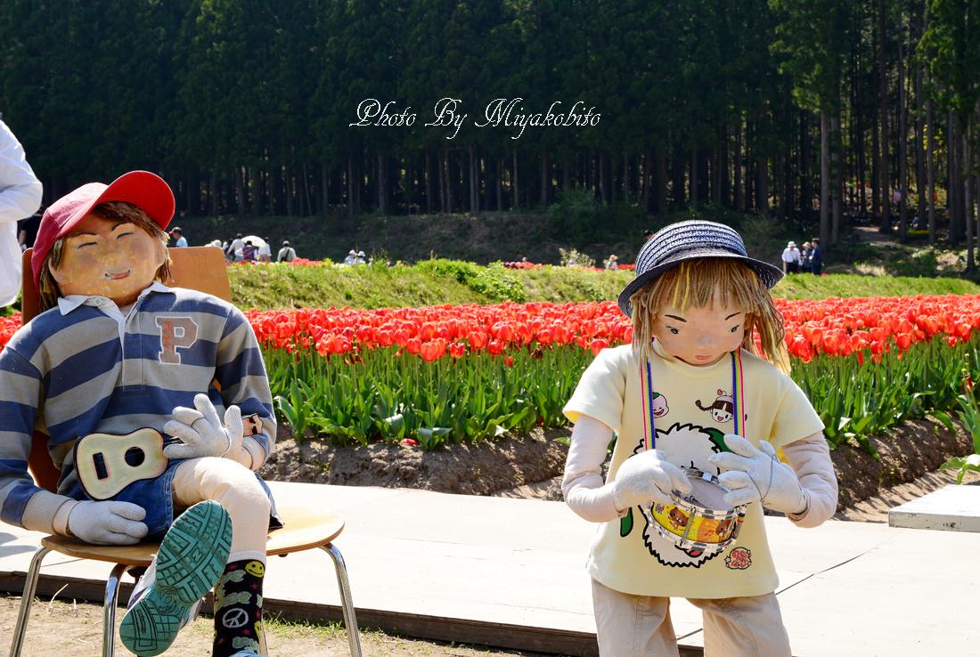 DSC_8359.jpg