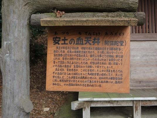 2018,3,10,マキノ町 048-1p