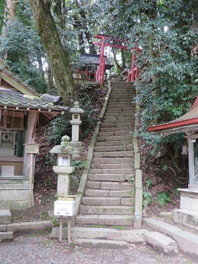 2018,3,10,マキノ町 017-1h