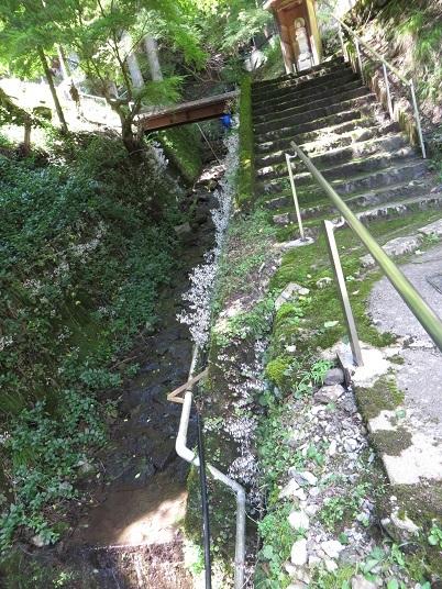 7月22日小沼の滝 006-2i