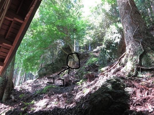 7月22日小沼の滝 012-2d