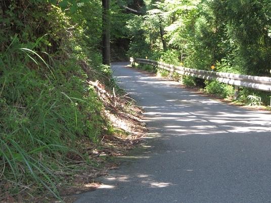 7月22日小沼の滝 017-2h