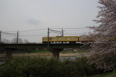 ☆IMGP0610