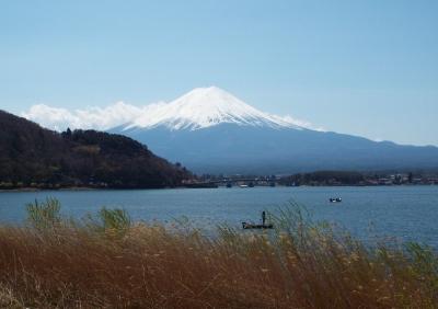 河口湖富士