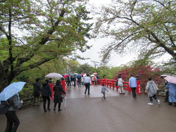 180501弘前城 (5)
